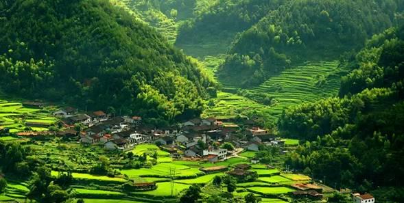 一个个村庄,一座座廊桥,一条条涧溪,一片片茶山是一幅自然水墨画,温馨图片