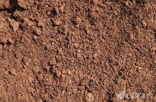 胎梦:孕妇梦见泥土是什么预兆?