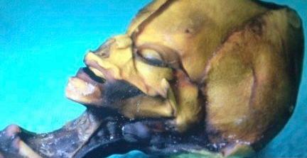 智力荒漠惊现外星人尸体 照片曝光网络引争议