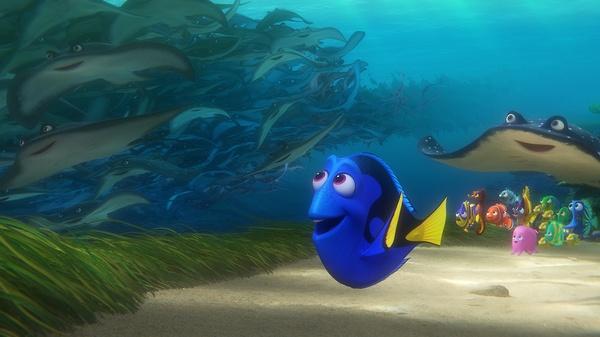 《海底总动员2:多莉去哪儿》:海底拾梦