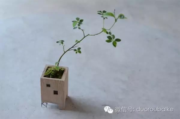 diy兔子花盆手绘教程