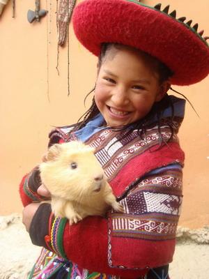 【秘鲁】天竺鼠:舌尖上的诱惑
