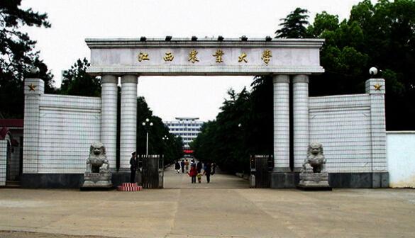 华中农业大学有哪些专业
