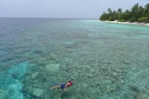 马尔代夫旅游浮潜注意事项