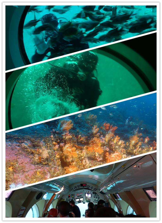 坐上世界最先进的潜水艇潜入海底40米探索水下精彩