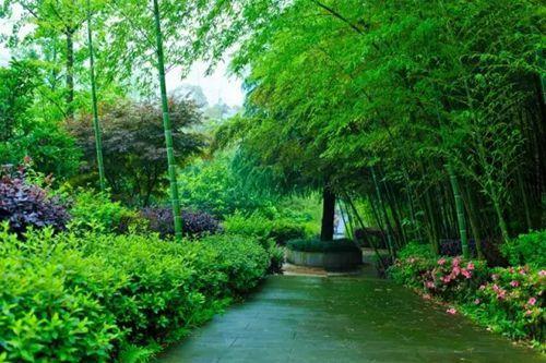重庆周边避暑纳凉免费旅游景点