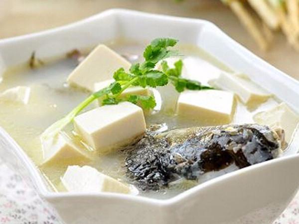 画完解剖结构图,小编特别想念妈妈做的鲫鱼汤,配着白嫩嫩的豆腐我能喝