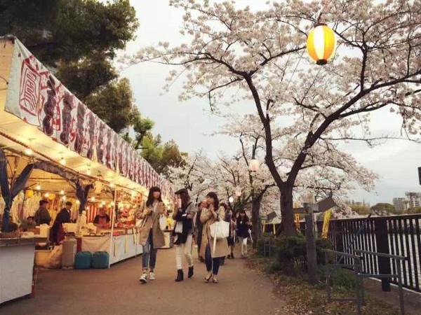 9天日本行程,还原一名日蜜的真实体验