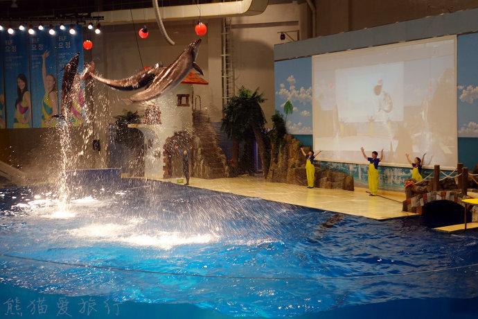 钻进亚洲最大水族馆水上星球做一个遨游海洋的梦