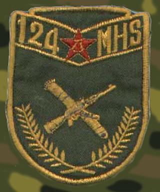 中国王牌军最新肩章臂章图片