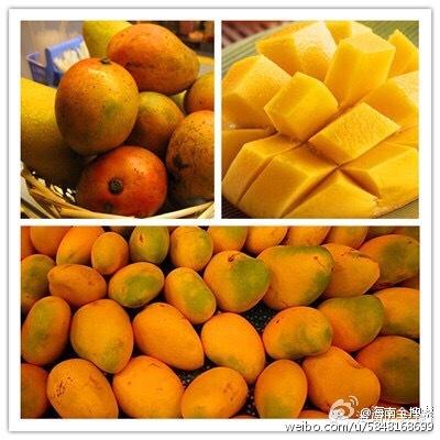 """5月 五月可以说是迎来了海南热带水果盛宴的""""开幕"""",这时候在海南,各图片"""