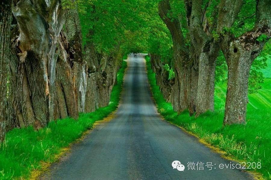 乡村忘返最高的迷人欧美小路,让人票选流连情趣咪喵图片