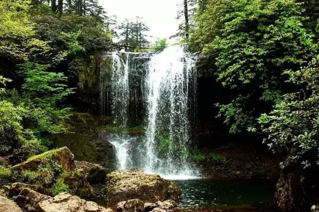 成都周边的避暑森林,凉快的感觉都在这儿!
