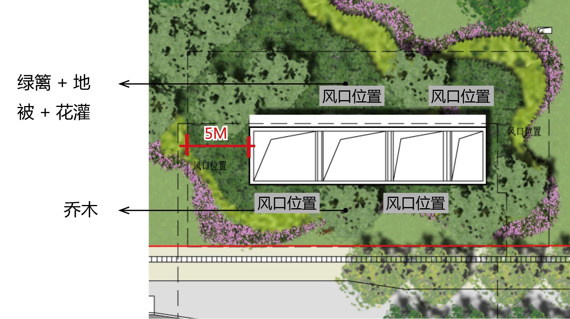 绿篱立面手绘图
