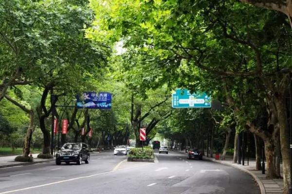 """杭州这些最""""慢""""的地方,你都走过吗?(附新店中奖名单)_图片"""