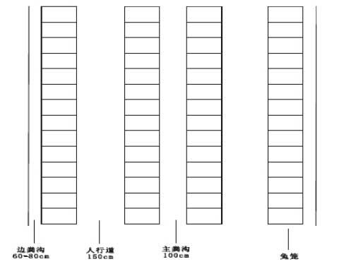 养兔场-规模化獭兔养殖场设计图图片