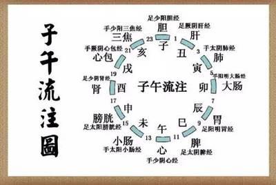 (十二时辰对应的十二经络走向图)-巧记十二经络穴位的方法,人体
