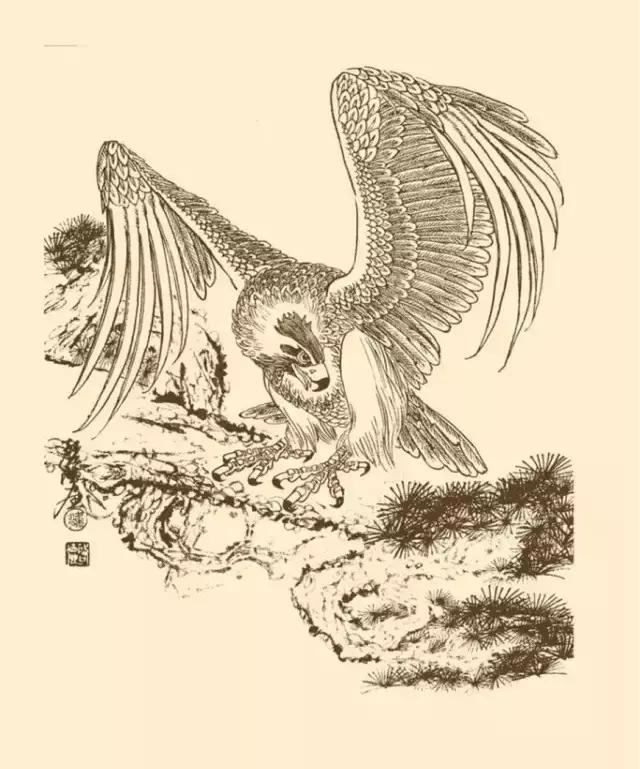 铅笔画手绘老鹰