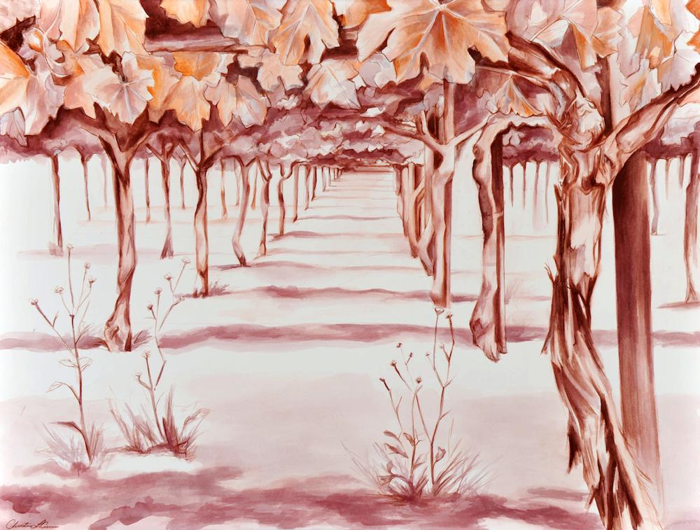 芭芭拉第一季度人体艺术囹�a_christina对葡萄酒的天分得自家传,她家里在美国圣芭芭拉拥有一片葡萄