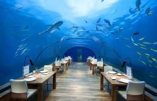 旅途之生餐厅秘密旅行餐厅图片4