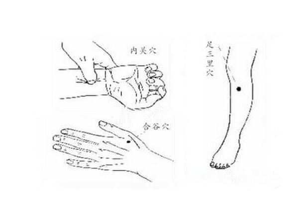 缓解胃疼,手脚冰凉2个穴位有奇效图片
