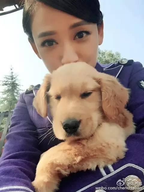 少女和狗做爱视频����_心疼陈乔恩错过霍建华?不如好好感叹她像个少女!