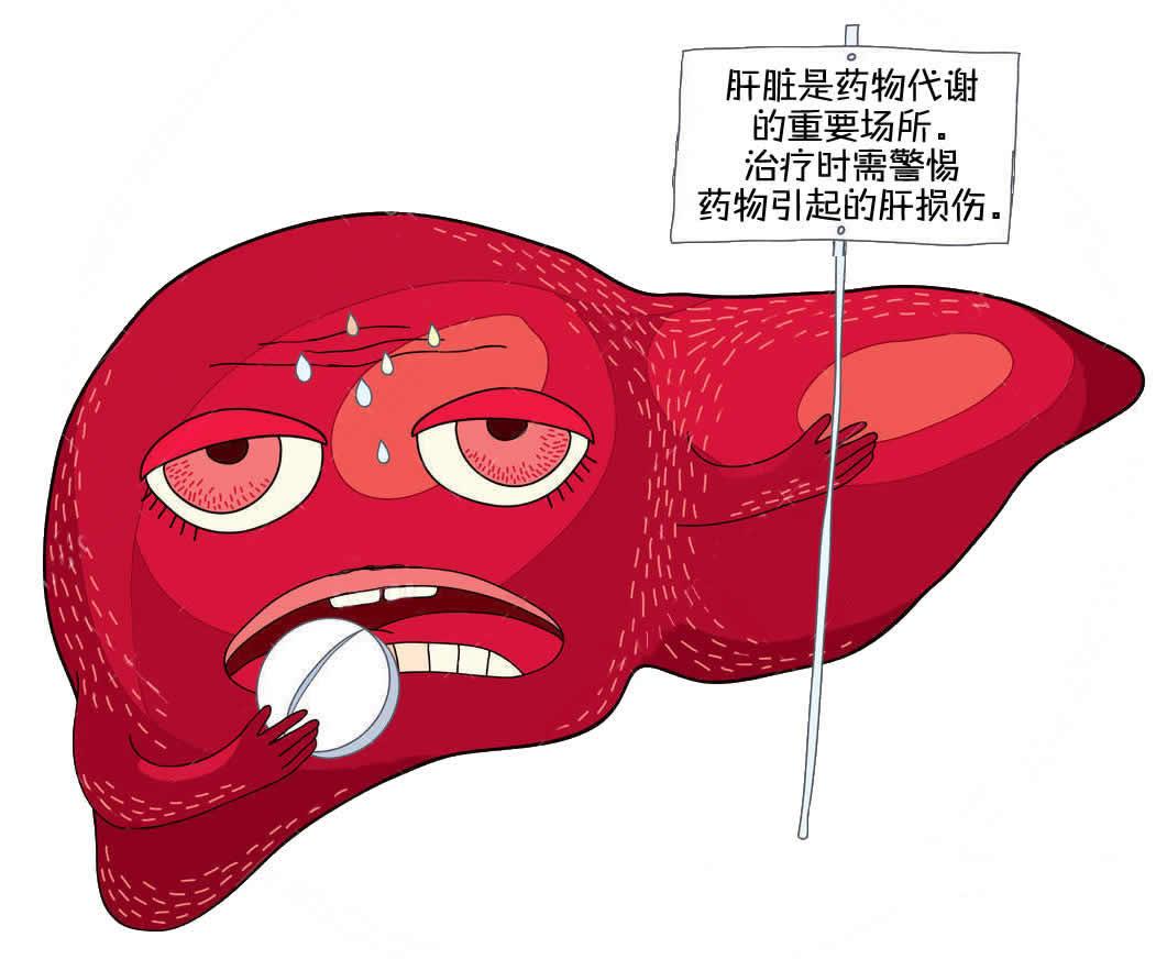 药物是怎样伤肝的?