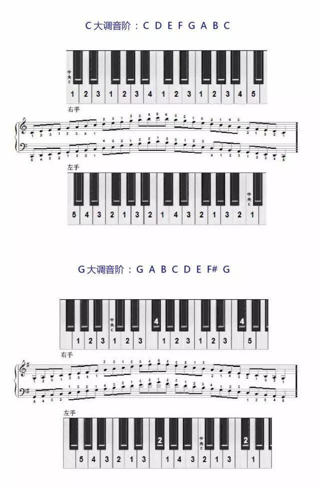 学琴必备 钢琴音阶指法图图片