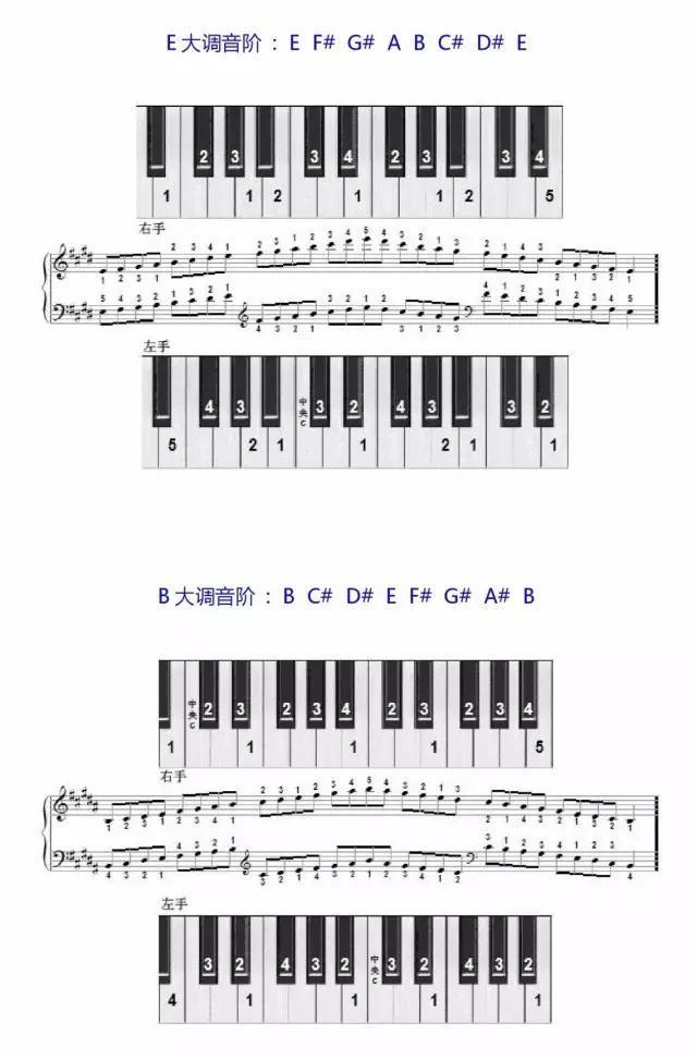 学琴必备——钢琴音阶指法图图片