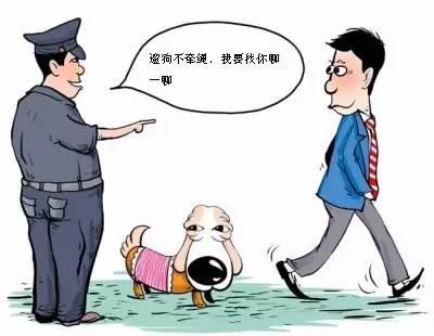文明遛狗英语作文_在香港购物说英语打折说汉语打死_我要去遛狗英语怎么说