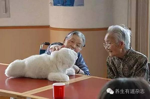 日本老年人用品
