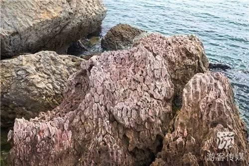 【邂逅海岛篇】金普新区蚂蚁岛