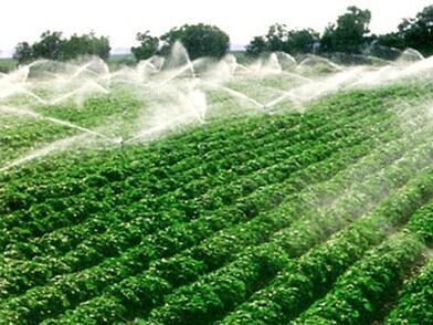 全球农业发展新趋势图片