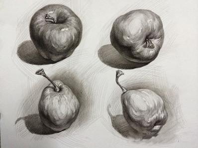苹果结构素描分析