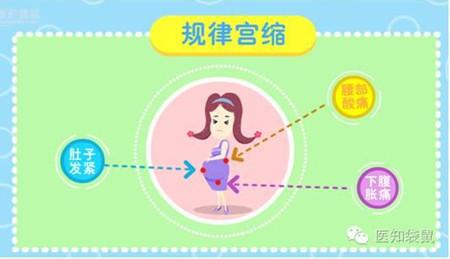 孕妈临产前的3个征兆:暗示马上要生啦!