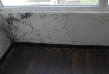 别墅地下室湿度过大造成哪些危害?