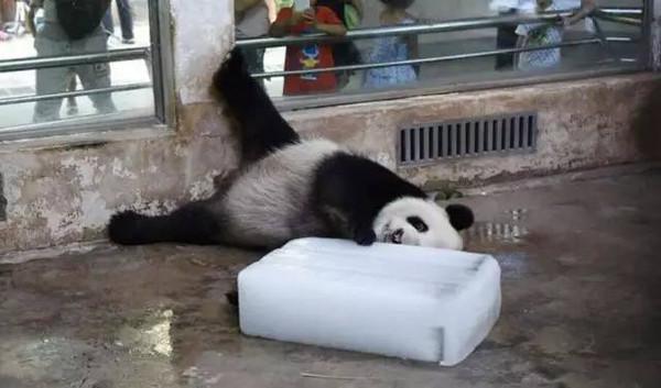 分分钟甩掉酷热,湖北人惦念的漂流马上就可以开始了!_搜狐母婴_搜狐网