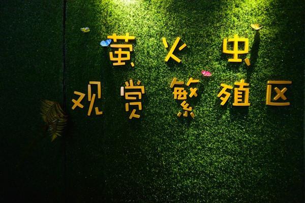 9元起】国色天乡萤火虫主题儿童乐园,给孩子一个