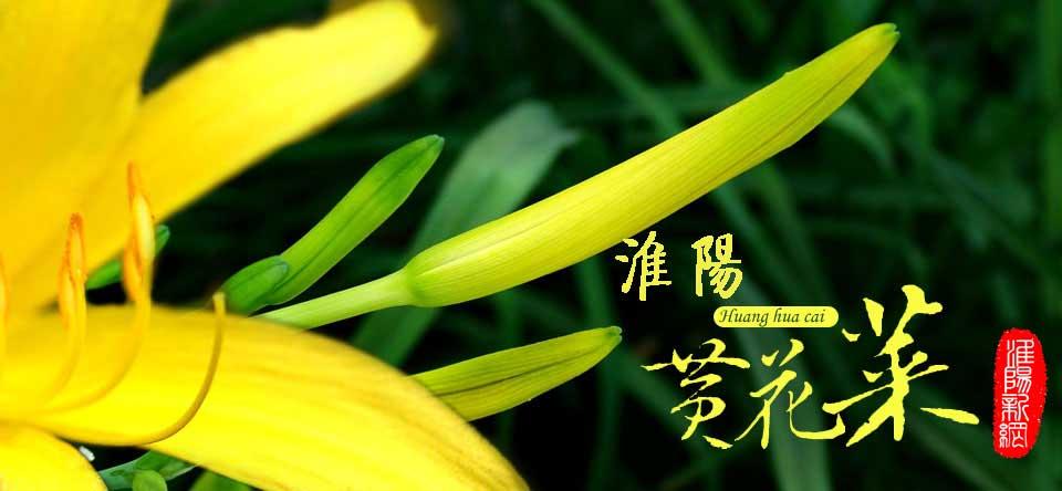 豫鉴名吃:中原美食南宁黄花菜美食小吃淮阳图片