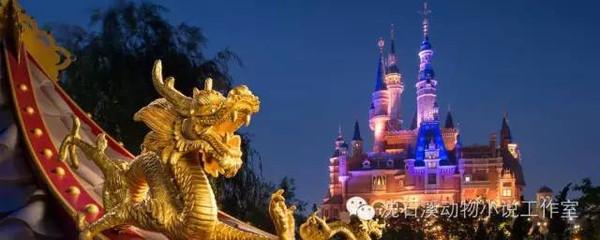 沈石溪+迪士尼乐园亲子游学团最后机会!