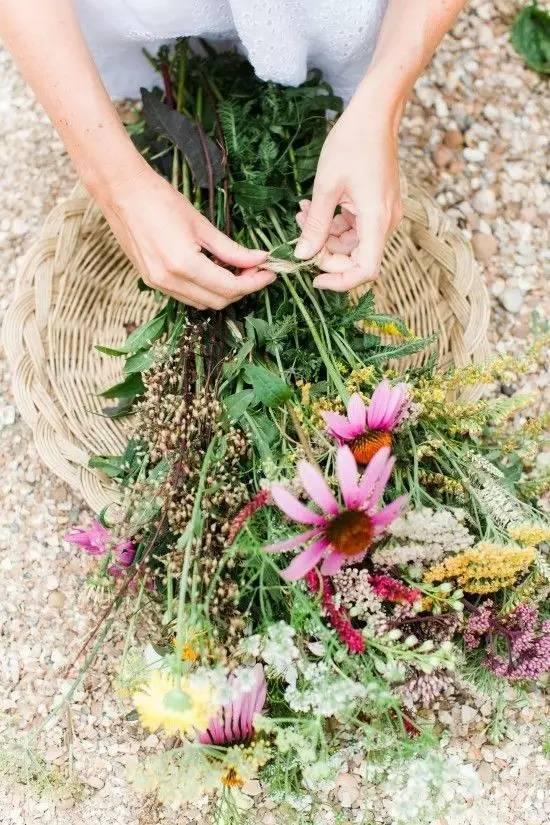 弹起我心爱的土琵琶简谱大笨虫- 花,是自然能量的 惊艳绽放. 不管是细碎而零星的野花,还是静谧而