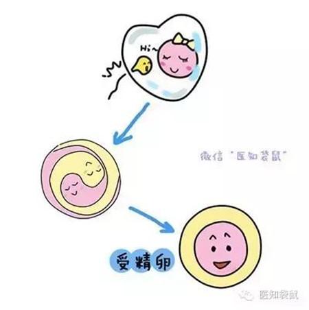 多胞胎顺产 分娩视频图片