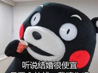单身狗过七夕情人节必备的表情包图片