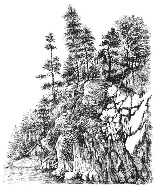 手绘森林小木屋