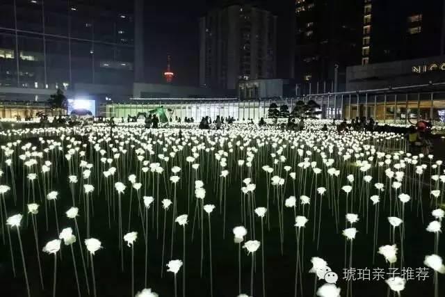 花海位于成都ifs七楼雕塑庭院