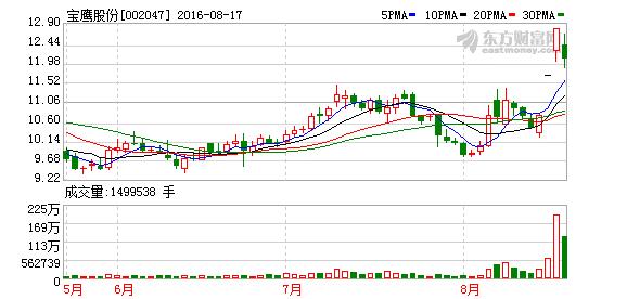 002047宝鹰股份