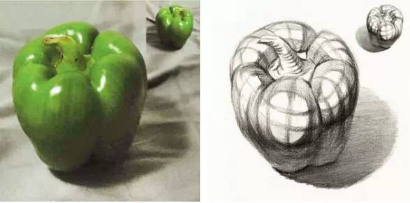 素描梨子结构图片