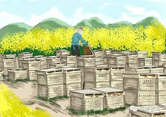 农网综保箱箱二次接线图