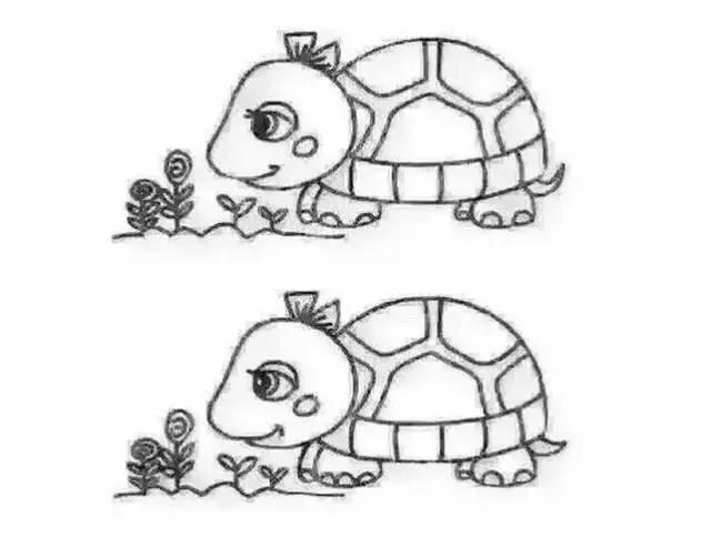 龟床什么成语_成语故事图片