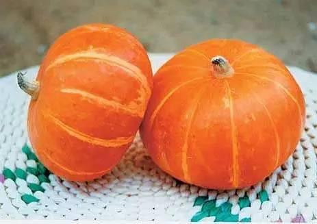 秋天来了 水果蔬菜营养冠军榜 缺啥吃啥